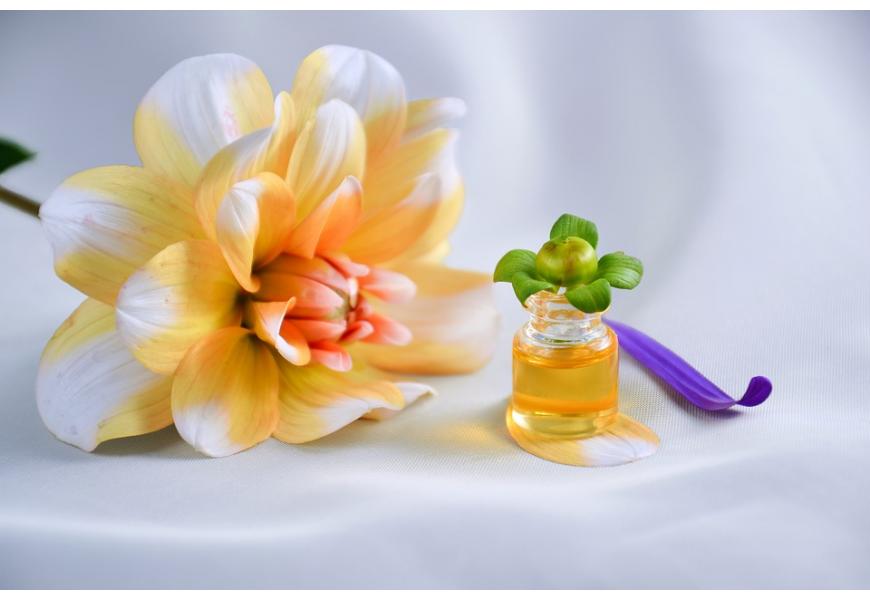 Tout bon produit en contient : pourquoi la vitamine E est-elle très importante pour la peau ?